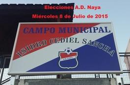 Nayaelecciones2015