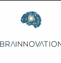 Brainnovation Ltd, Kenya logo