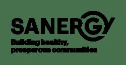 saner.gy logo