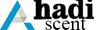 AHADI Ascent  logo