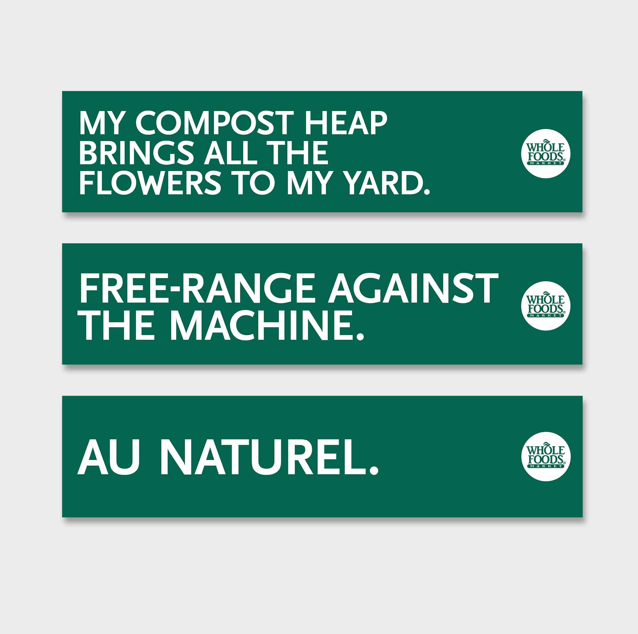 Graphic Bumper Sticker Design