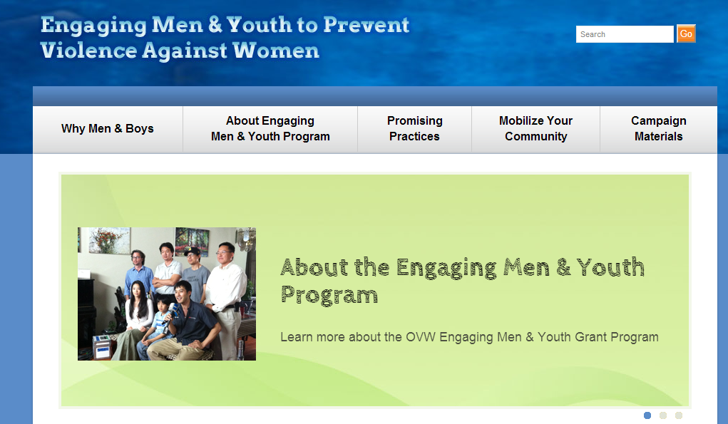 Engaging Men and Youth Screenshot