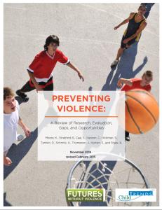 Preventing_Violence_Report