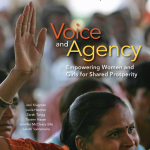 Voice_and_Agency