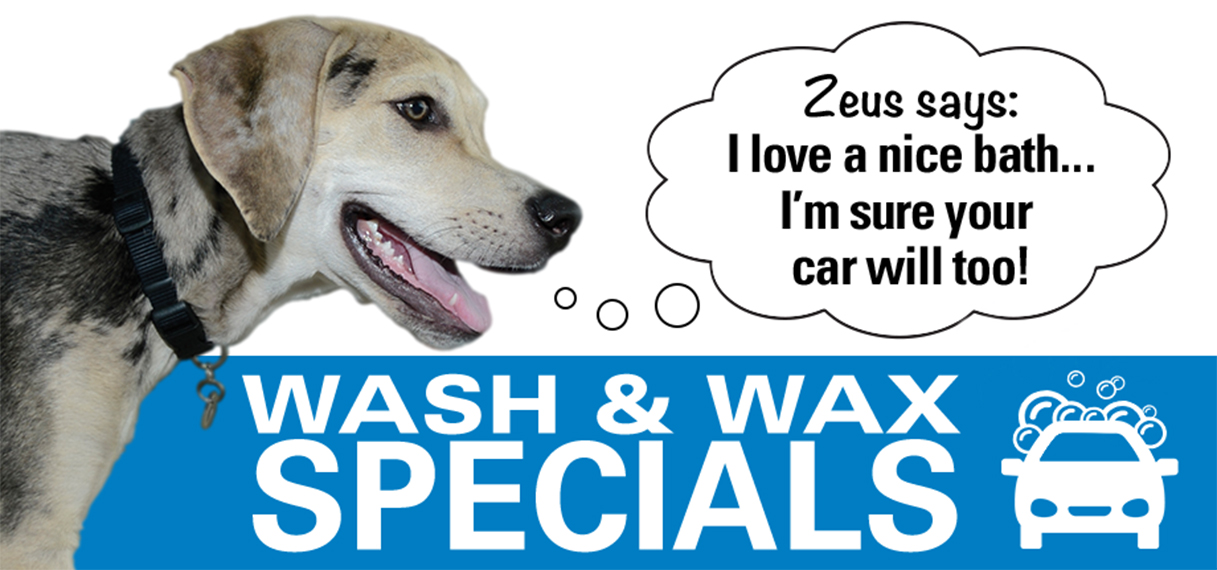 brandon-honda-wax-wash-specials
