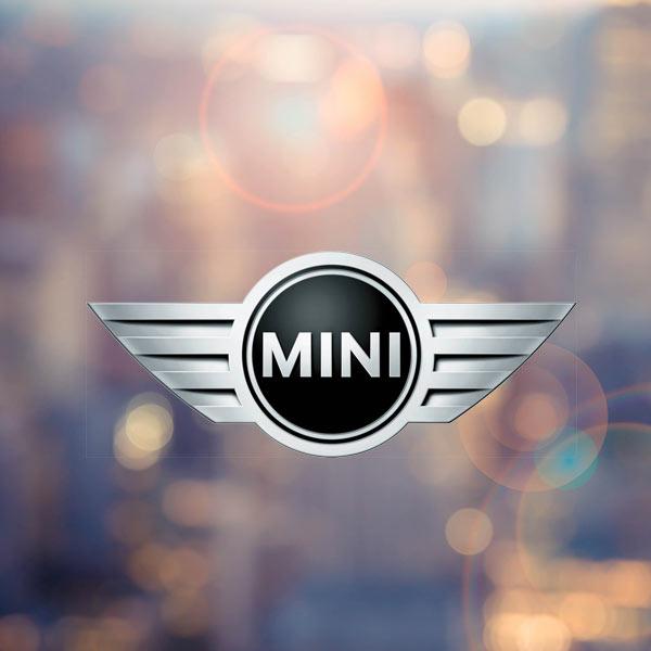 """""""Mini"""