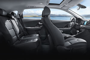 2017 Kia Niro Gray Interior with contrast stitching