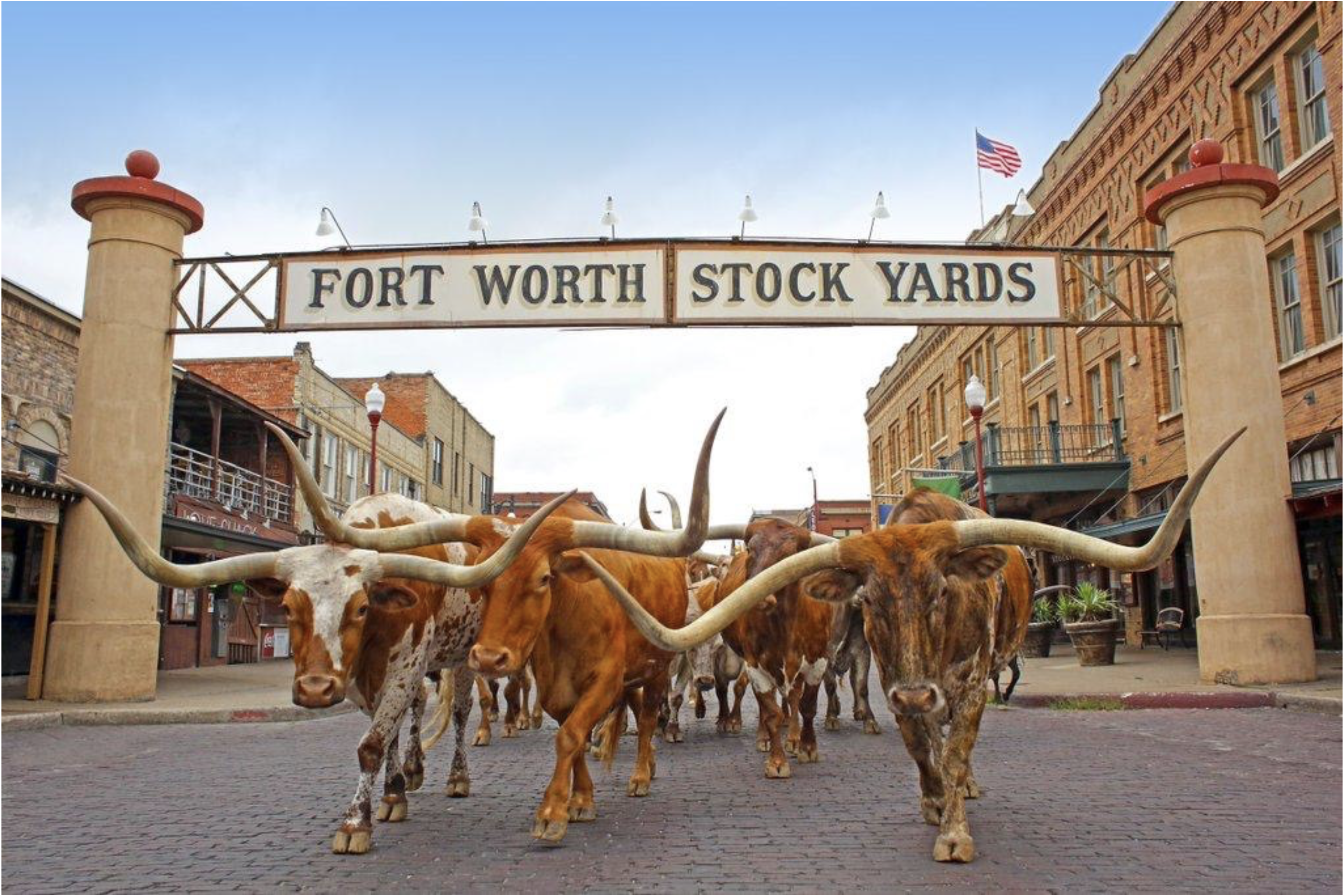 Fort Worth Toyota >> Things To Do In Fort Worth Tx Shottenkirk Toyota Of