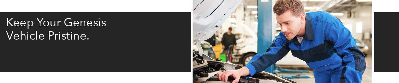 Lakeland Genesis, mechanic in blue working on car