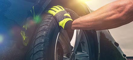 Tire Rotate and Brake Inspection