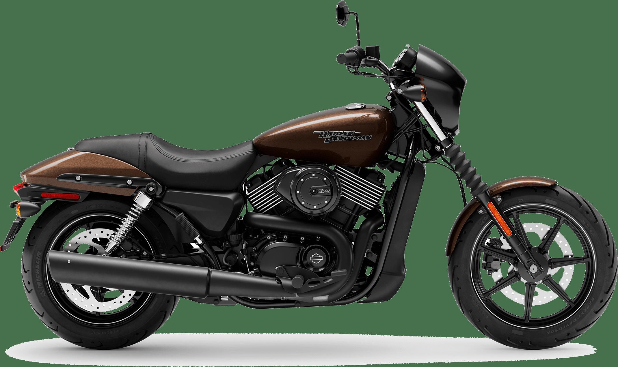 2019 Harley-Davidson H-D Street 750 Rawhide