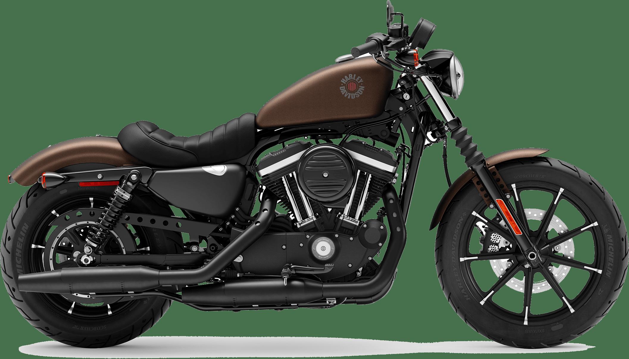 2019 Harley-Davidson H-D Sportster Iron 883 Rawhide Denim