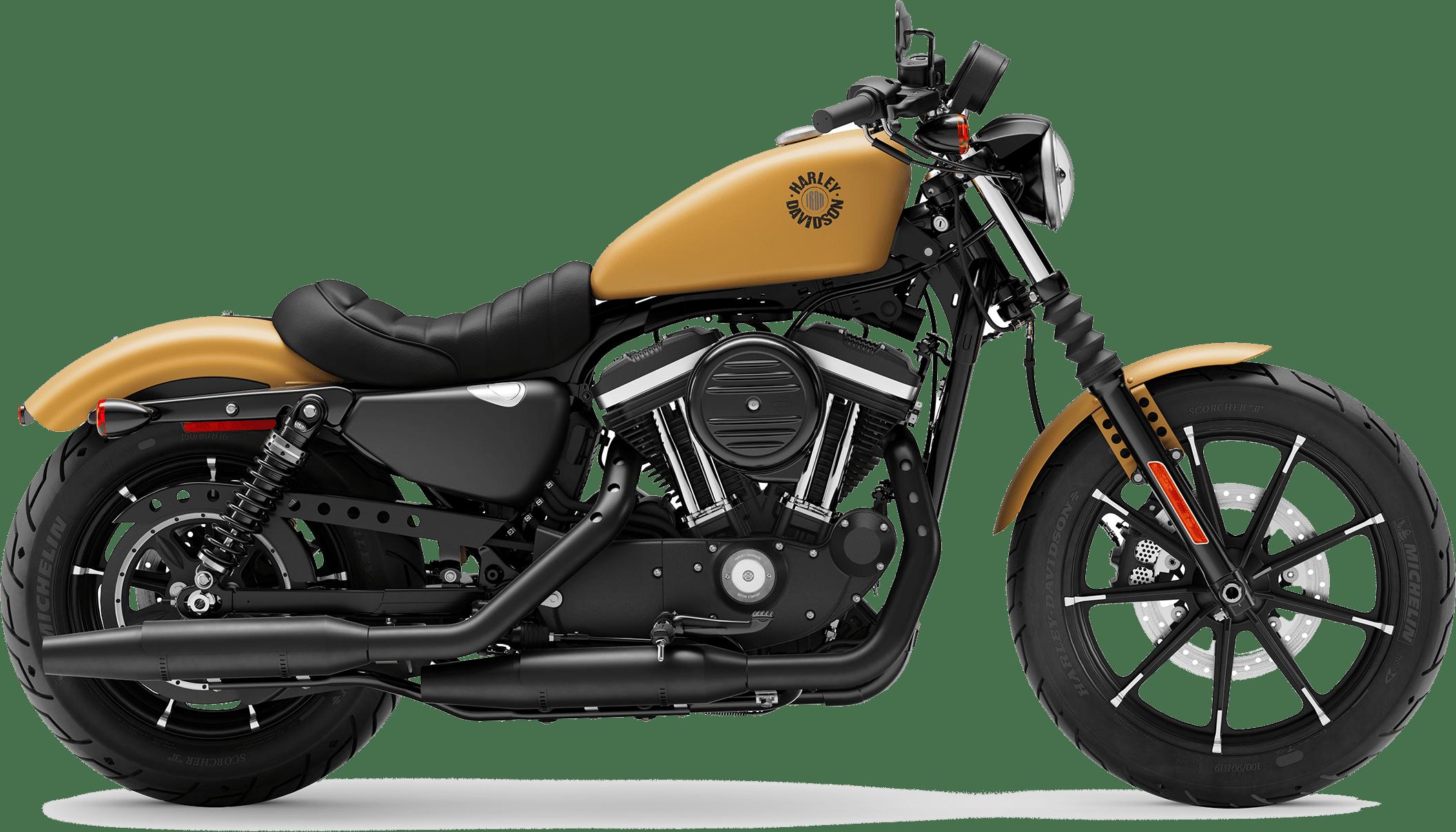 2019 Harley-Davidson H-D Sportster Iron 883 Rugged Gold Denim
