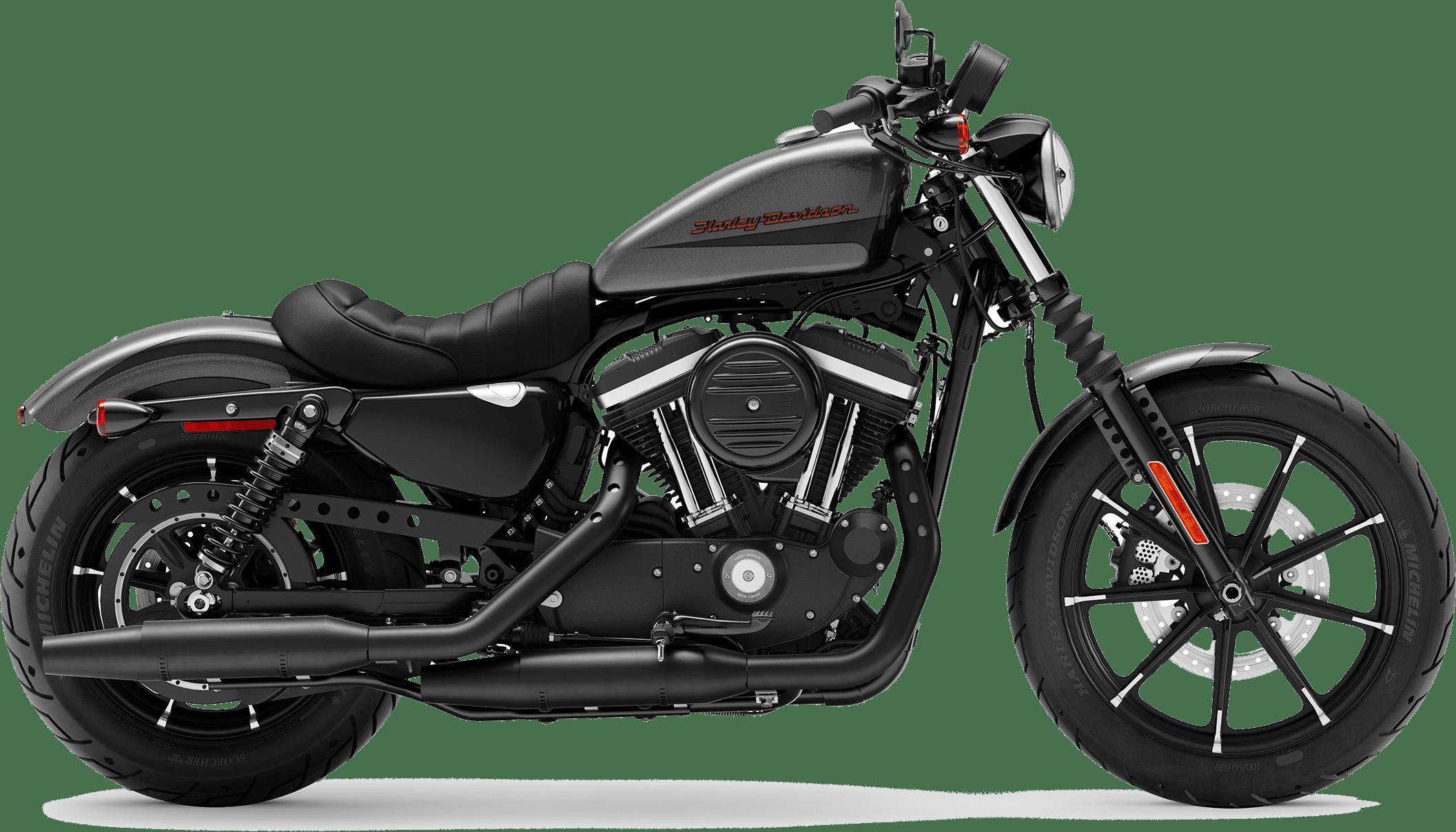 2019 Harley-Davidson H-D Sportster Iron 883 Silver Flux Black Fuse