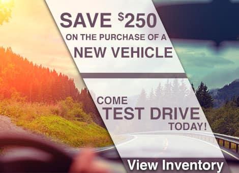 Plattner Quincy Test Drive
