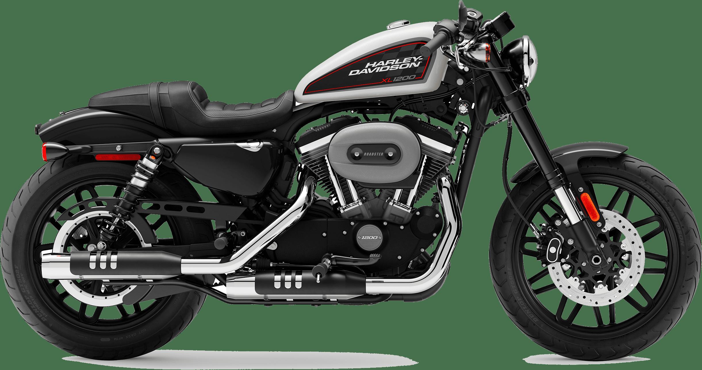 2019 Harley-Davidson H-D Sportster Roadster Billiard White