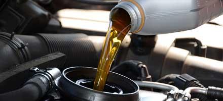 Oil & Filter Special