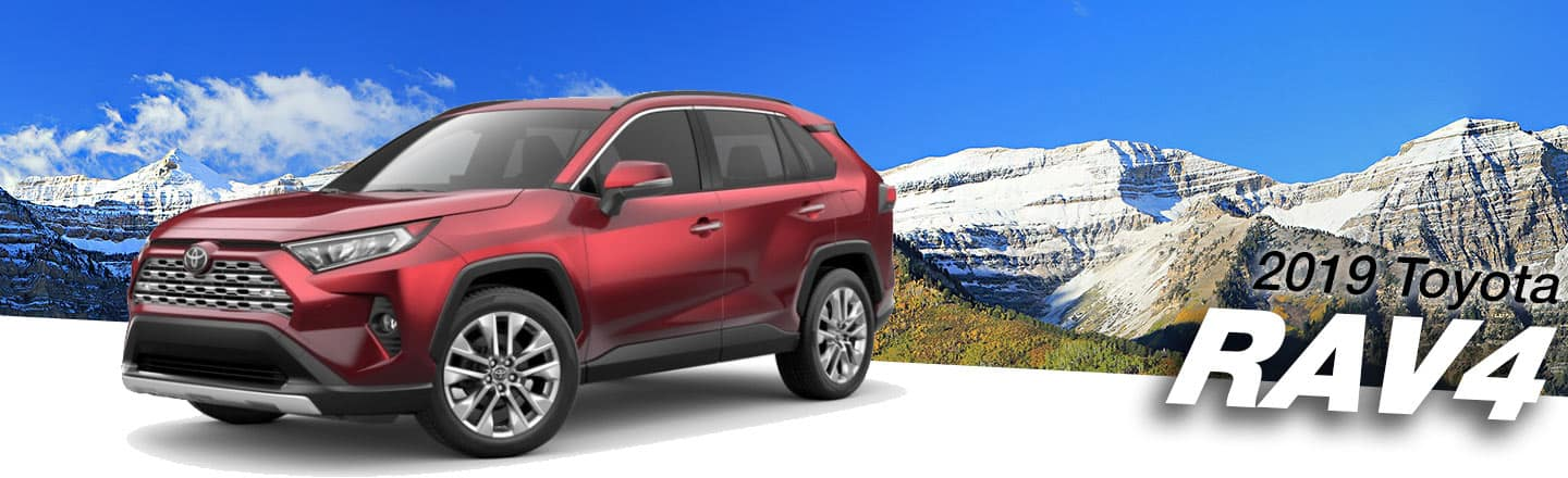 2019 Toyota RAV4 For Sale Near New Orleans and Covington, LA