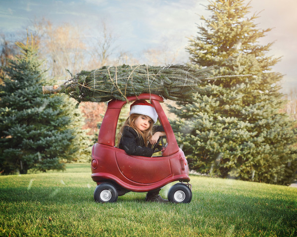 Check out these tips from Henna Chevrolet for how to transport your Christmas tree safely.