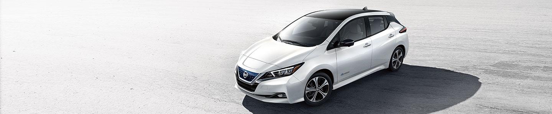 2019 Nissan Leaf Brandon