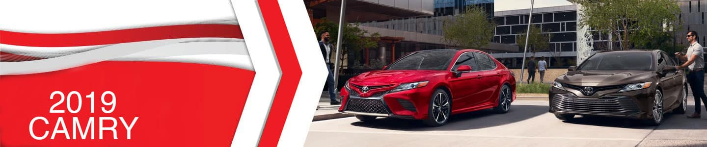 2019 Toyota Camry at Estabrook Toyota