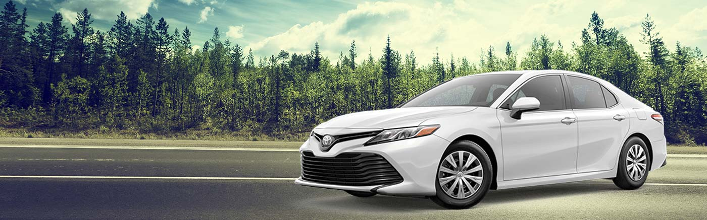2019 Toyota Camry For Sale At Stephen Toyota In Bristol, CT
