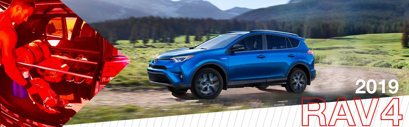 2019 Rav4 On Road at Shottenkirk Toyota of Granbury