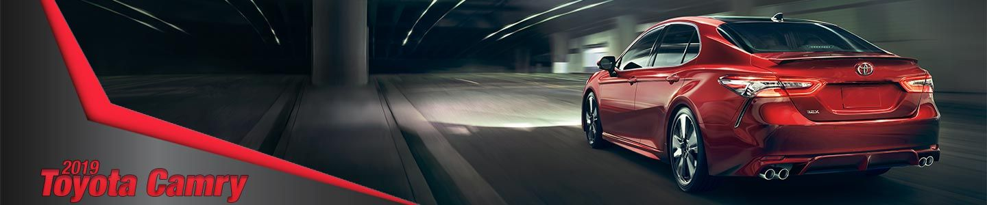 2019 Toyota Camry at Steven Toyota