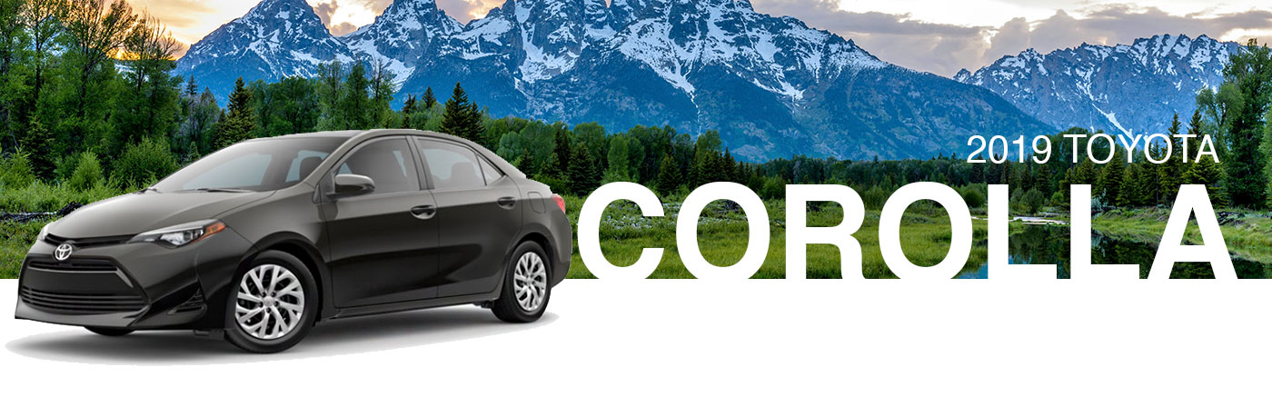New 2019 Toyota Corolla For Sale in Cookeville, TN