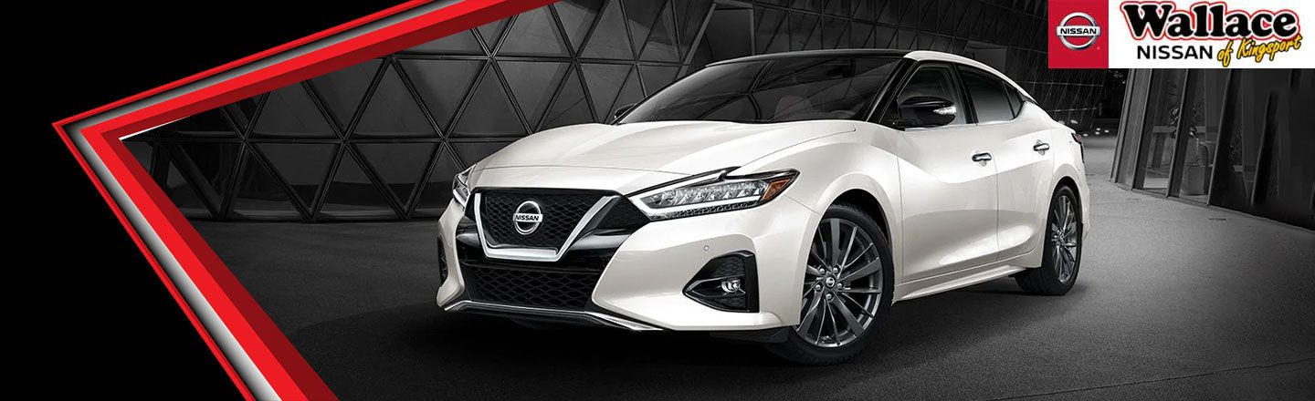 2019 Nissan Maxima, Johnson City, TN
