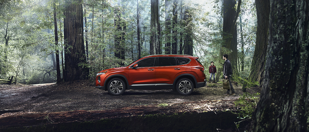 Red Santa Fe Parked in the woods