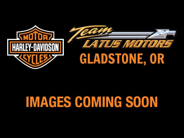 2019 Harley-Davidson Touring Road King Base