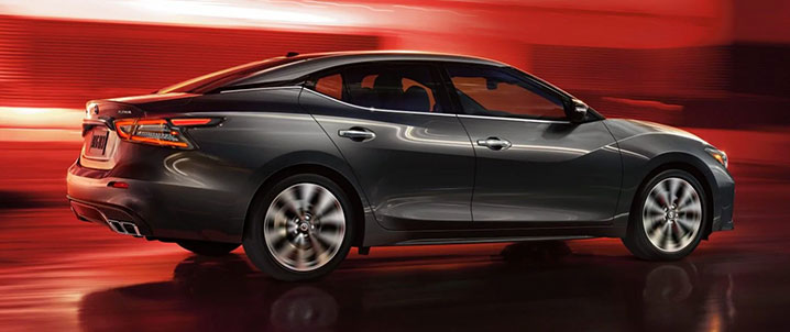 Take the Maxima Home With You
