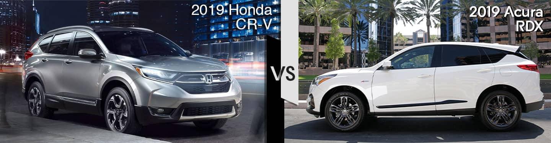 Davis Acura 2019 Acura RDX vs 2019 CR-V