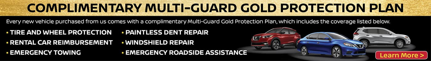 Multiguard Gold Protection Plan