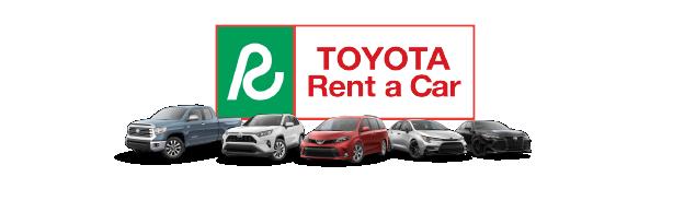 One Day Car Rental