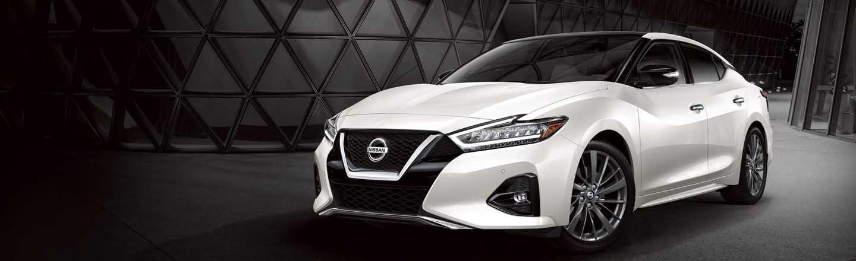 Shop The 2020 Nissan Maxima Sedan Lineup Fort Collins Nissan