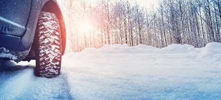 Winterize Special