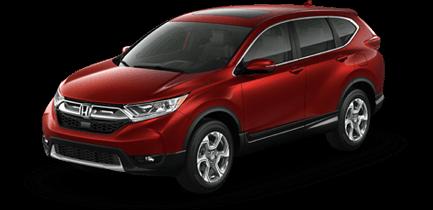 2019 Honda CR-V at Manly Honda