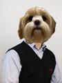 Mr.Crosby  Bio Image
