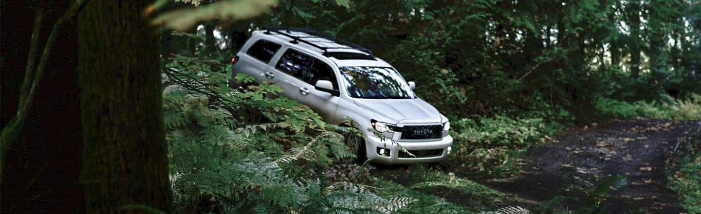 2020 Toyota Sequoia available at Musson Patout Toyota