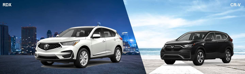 Compare The 2020 Acura RDX Versus The 2020 Honda CR-V Near Yardley, PA