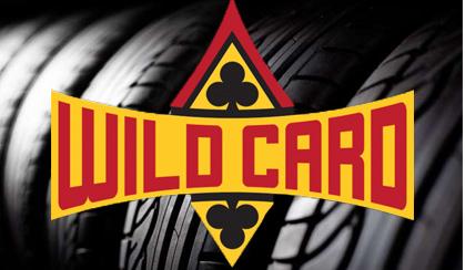 10% OFF Wild Card