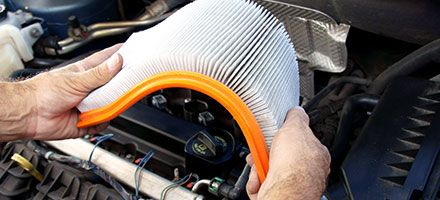 Air Filter Change Special