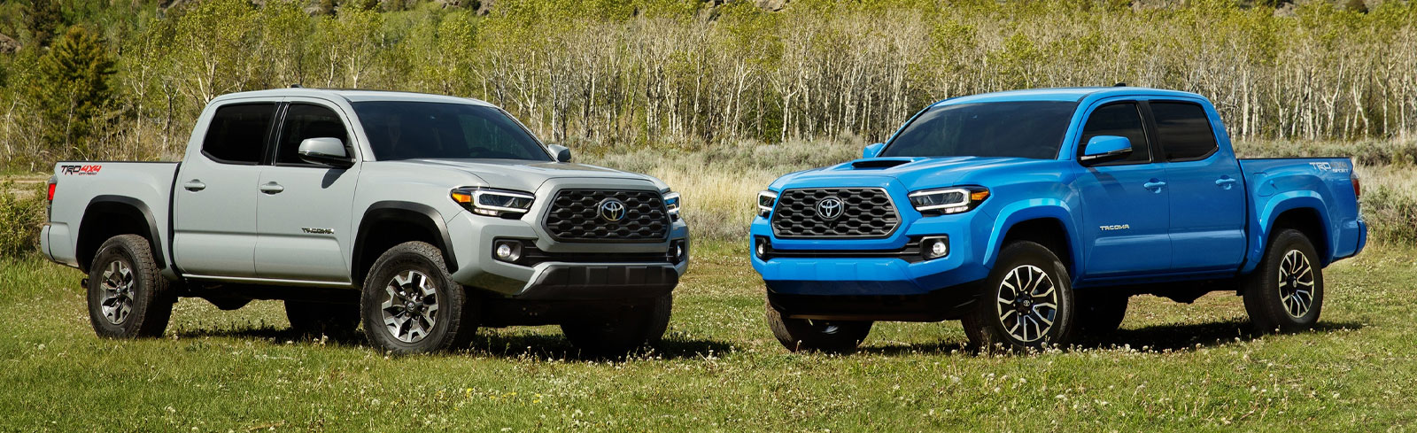 All New 2020 Toyota Tacoma for Sale at Future Toyota of Yuba City