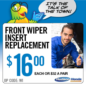 Front Wiper Insert Replacement