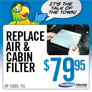 Replace Air & Cabin Filter