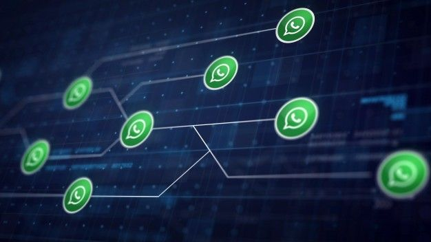 All you need to know about WhatsApp Business API