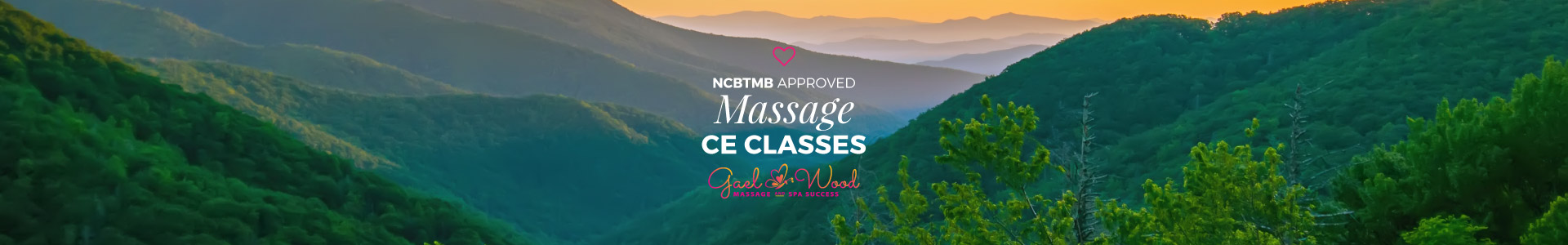 NCBTMB Approved Massage CE Classes, Live and Online