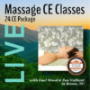 Live Massage CE Classes 24-hour Package with Gael Wood and Zan Valliant
